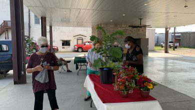 Photo of Busy Morning at the Hope Farmers' Market
