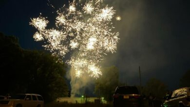 Photo of DeAnn Brightens The Night With 2nd Annual Fireworks Show