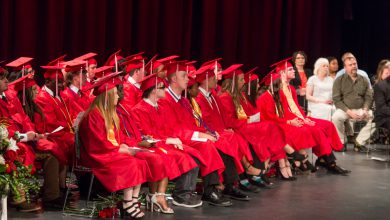 Photo of Blevins Class of 2019 Commencement