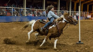 Photo of Hope FFA Rodeo Results and Photos