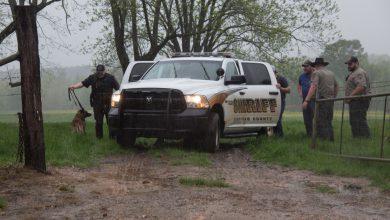 Photo of Escaped Suspect Gets K9 Souvenir During Recapture