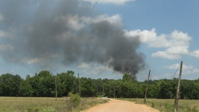 Photo of Burn Ban Lifted in Hempstead County