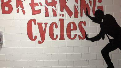 Photo of Mural captures CATS philosophy