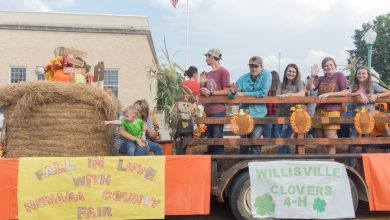 Photo of Nevada County Fair Photos