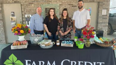 Photo of Farm Credit Joins Hope Farmers' Market This Morning