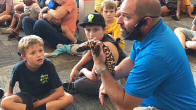 Photo of Animalogy teaches kids about different animals at the Hempstead County Library [PHOTOS]