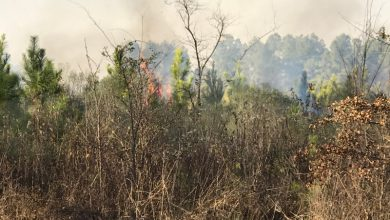 Photo of Routine Yard Fire Gets Out of Hand, Burns 40+ Acres on County Line