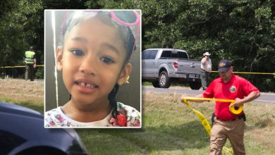Photo of Remains Located in Fulton Confirmed to be 4-year-old Maleah Davis