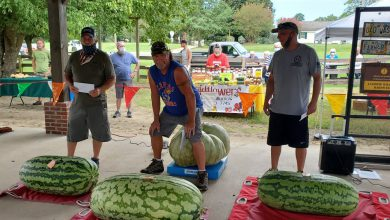 Photo of Old Washington Farmer's Market Official Watermelon Weigh-Off a Success