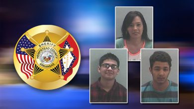 Photo of Three Arrests Made in Blevins Post-Game Fight