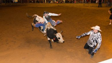 Photo of Spring Hill FFA Rodeo This Week
