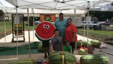 Photo of Watermelon Weigh-off